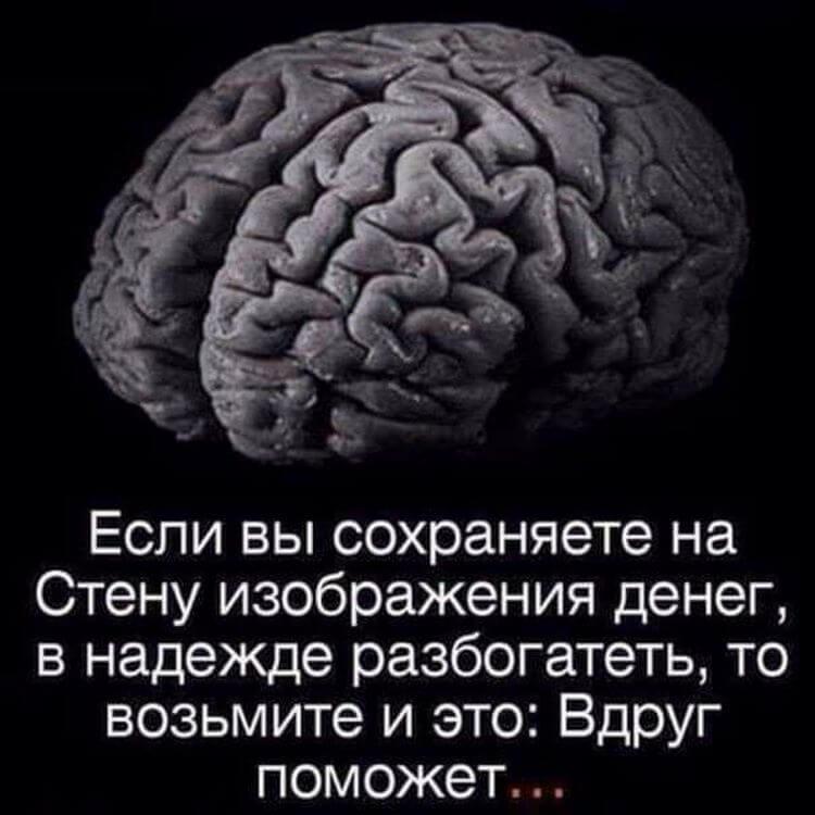 Мозг картинки с надписями