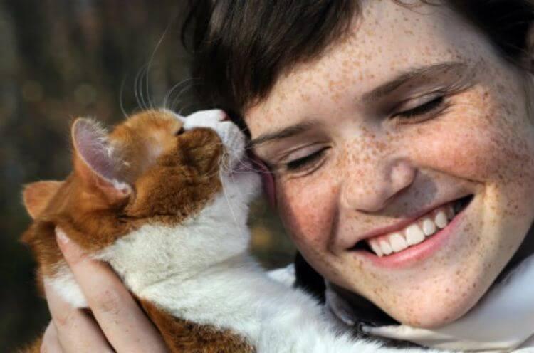 14 признаков того, что кошка признается человеку в любви